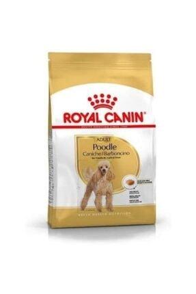 Royal Canin Adult Poodle Küçük Irk Yetişkin Köpek Maması 3 kg