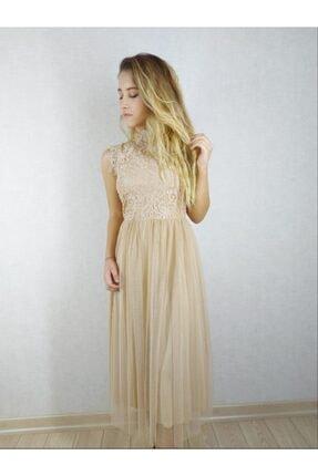 Modern Giyin Kadın Pudra Dantel ve Tül Detaylı Bayan Abiye Elbise