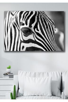 Hediyeler Kapında 90x130 Zebra Kanvas Duvar Tablo