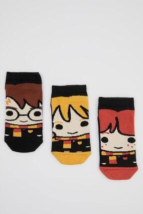 DeFacto Erkek Çocuk Harry Potter Lisanslı 3'lü Patik Çorap