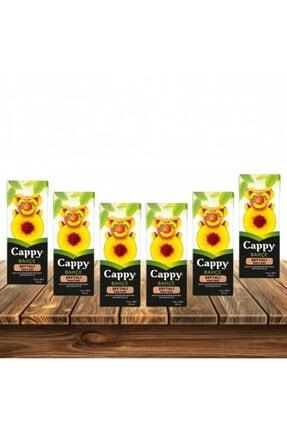 Cappy Şeftali 200ml 6'lı Paket