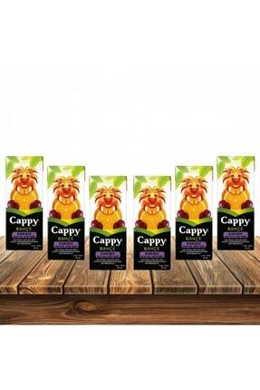 Cappy Karışık 200ml 6'lı Paket