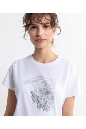 Beşiktaş Eagle Sketch Kadın T-shırt 8020135
