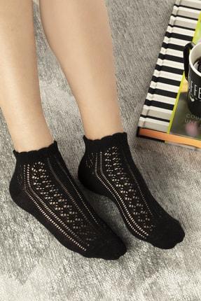 English Home Amber Pamuk Kadın Çorap Siyah