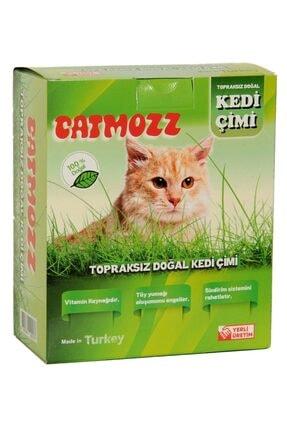 CatMozz Yavru Ve Yetişkin Kediler Için Büyük Boy Organik Topraksız Kedi Çimi Seti 1 Adet