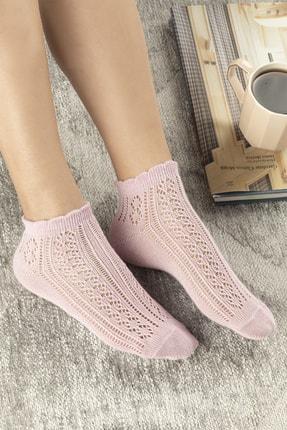 English Home Amber Pamuk Kadın Çorap Pembe