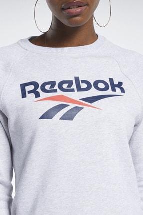 Reebok Kadın Spor Sweatshirt - Cl F Vector Crew