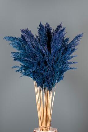 Goya Home Şoklanmış Mavi Renkli Pampas Demeti 10'lu