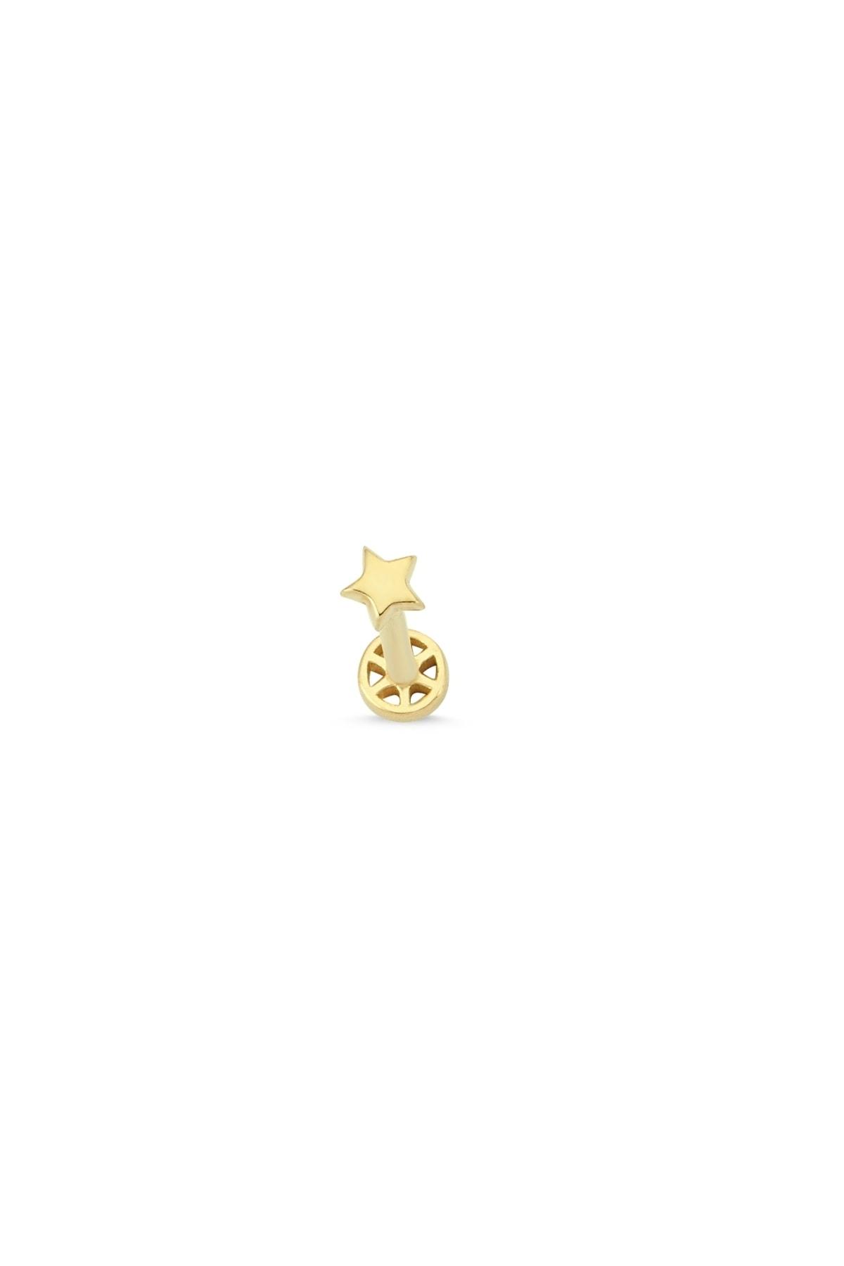 Altın Sepeti Kadın Altın Mini Yıldızlı Tragus Küpe 1