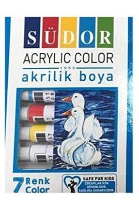 Südor Akrilik Boya 7 Renk Tüpte +palet+fırca Seti