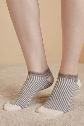 Penti Çok Renkli Rib 3lü Patik Çorap