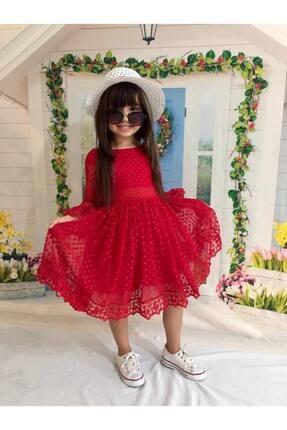 Buse&Eylül Bebe Kırmızı Şapkalı Tüllü Güpür Detaylı Kız Çocuk Elbisesi