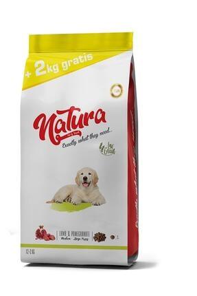 natura Düşük Tahıllı Kuzu Ve Narlı Orta-büyük Irk Yavru Köpek Maması 14 Kg