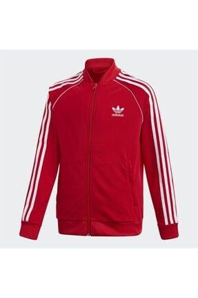 adidas Kız Çocuk Kırmızı Sweatshirt
