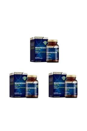 Nutraxin Yorgunluğun ve Bitkinliğin Azalmasına Yardımcı Magnesıum 60 Tablet 3 Adet