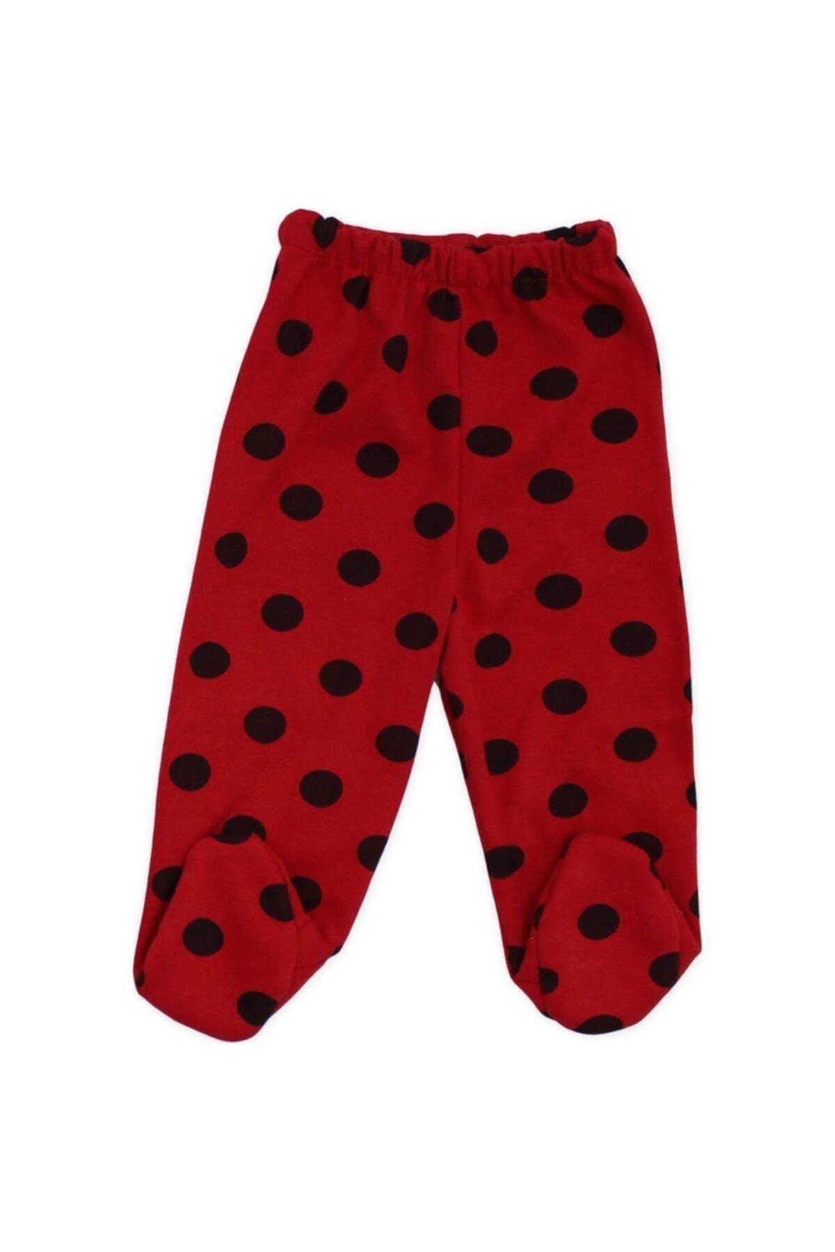 Baby Point Unisex Bebek Kırmızı Uğur Böceği Baskılı Badili Takım 2
