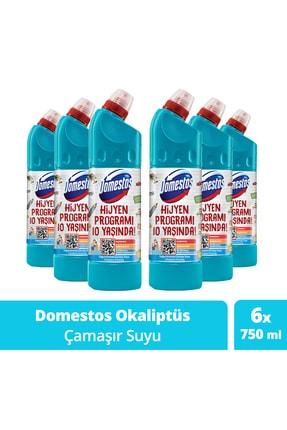Domestos Çamaşır Suyu Okaliptüs 750 ml - 6'lı Paket