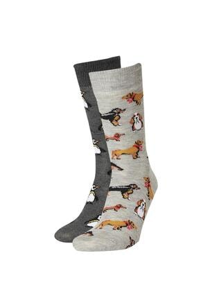 DeFacto Erkek Çok Renkli Sevimli Köperkler Ve Penguen Desenli 2'Li Soket Çorap S1674AZ21AUKR