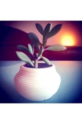 Skygo Saksı Süslü Çiçek Bitki Dekor Kalemlik Hediyelik Süs Eşyası