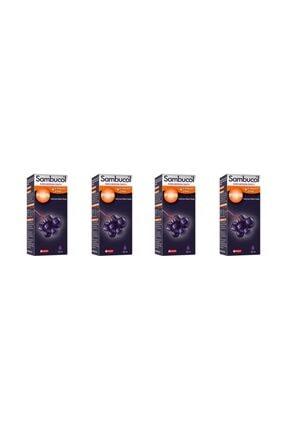 Sambucol Plus Kara Mürver Özütü + C Vitamini & Çinko 120 Ml 4 Adet