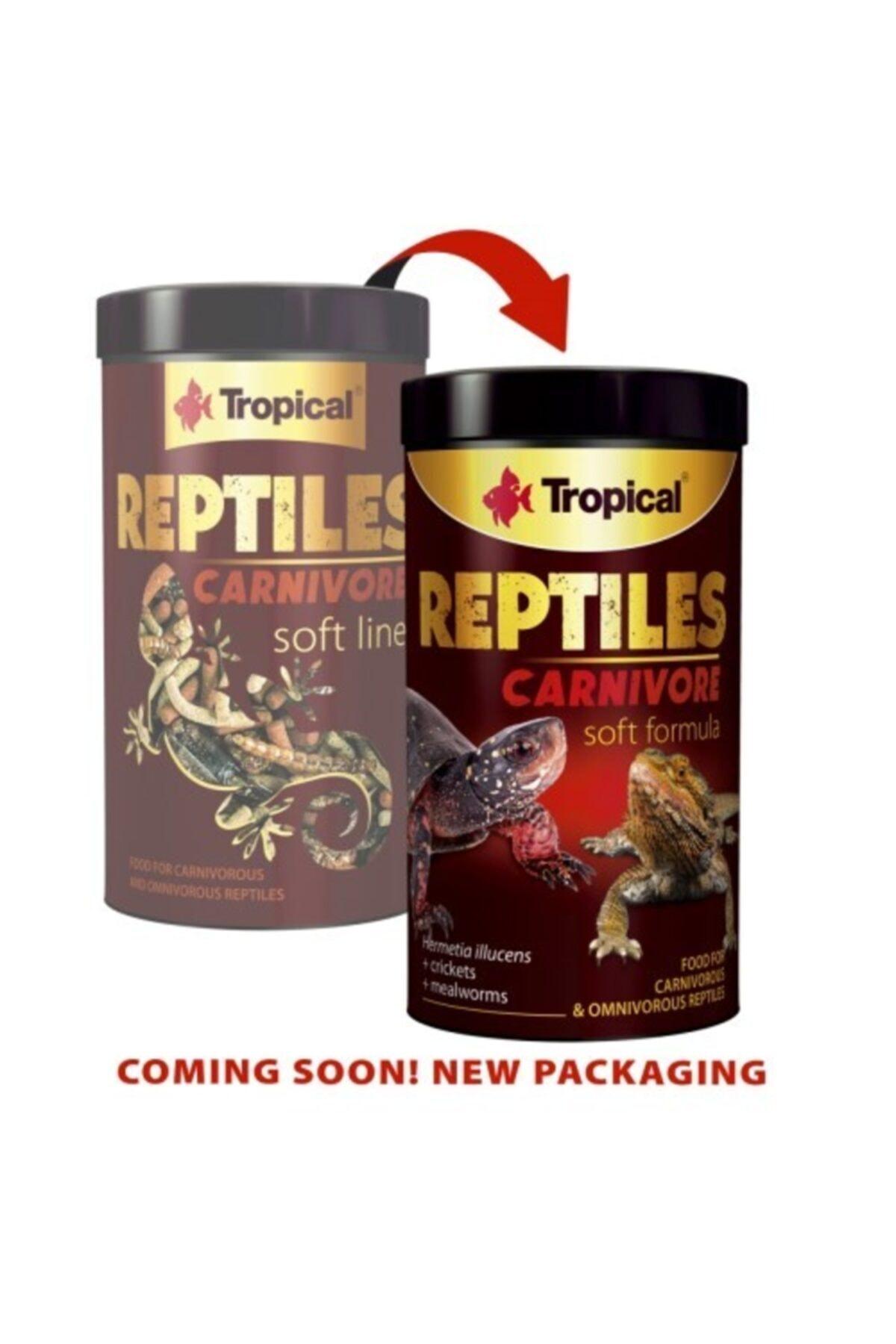 Tropical Reptiles Carnivore 250ml/65g 1