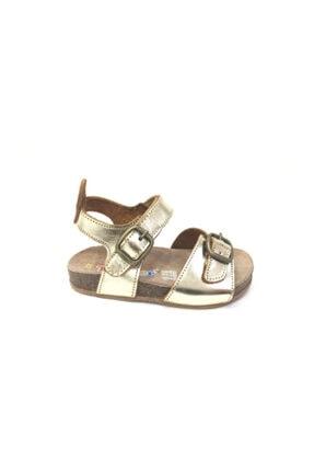Toddler Kız Çocuk Altın Anatomik Hakiki Deri Sandalet 2151