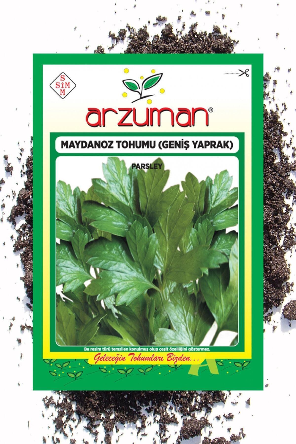 Arzuman Tohum Tohum Seti ( Roka Maydanoz Dereotu Tere Tohumu Toplam 100 Gram ) 2
