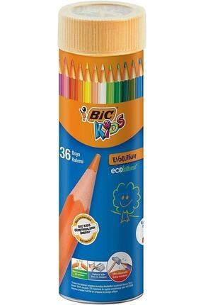 Bic Bıc 968491 Evolution 36 Lı Kuru Boya Kalemi