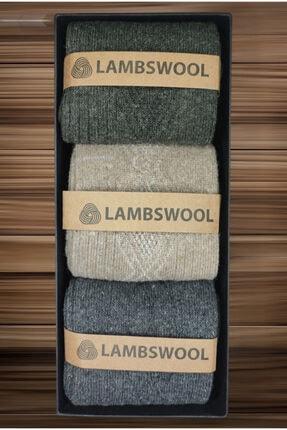 BlueStore Erkek Koyun Yünü Lambswool Kışlık 3'lü Çorap Seti