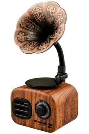 JUNGLEE Ft-05 Mini Retro Ahşap Gramafon Radyo Music Box Bluetooth Hoparlör Ahşap