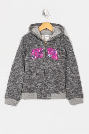 U.S. Polo Assn. Grı Kız Çocuk Sweatshirt