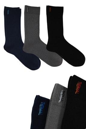 DAYCO Termal Premium Çorap 3'lü Dikişsiz (siyah, Lacivert, K. Gri)