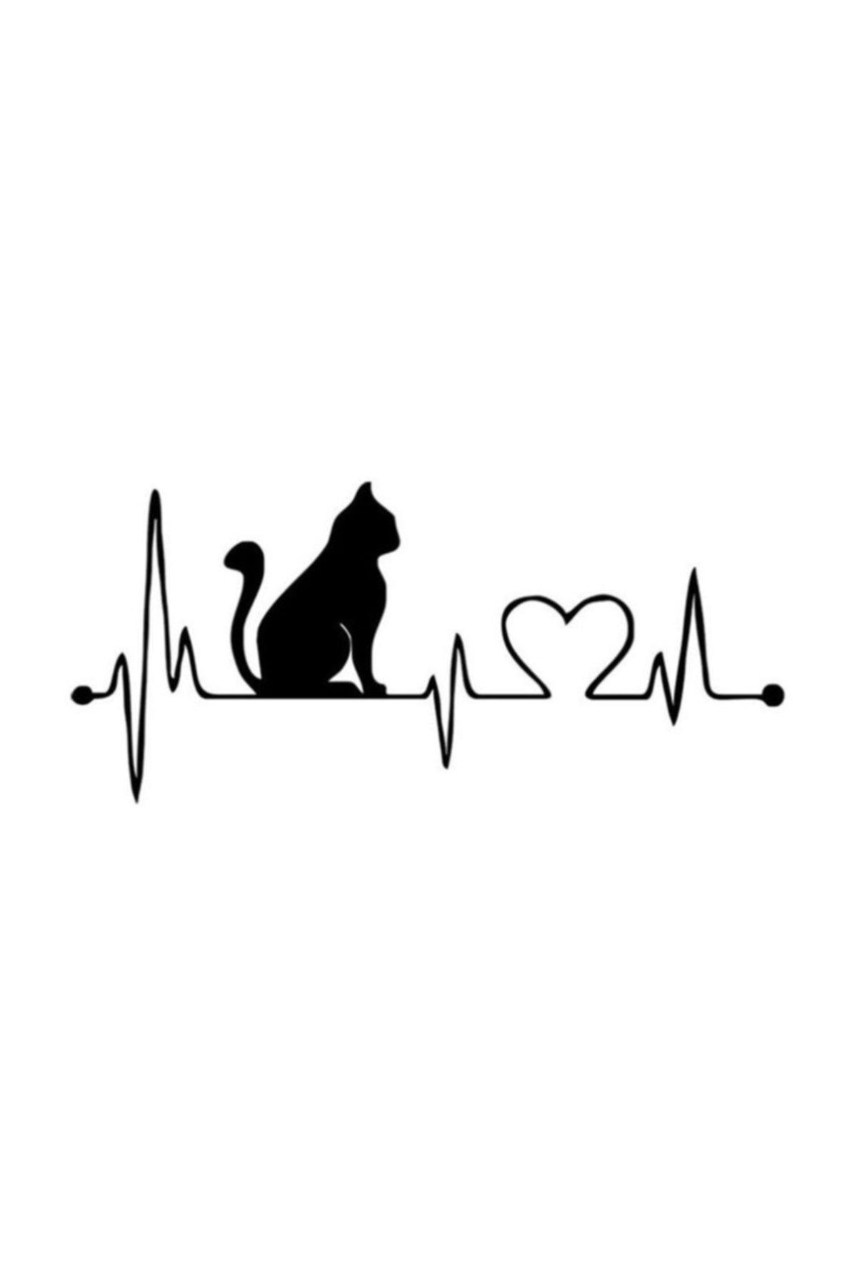 TSC Kalp Kedi Araba Sticker Yapıştırma 1