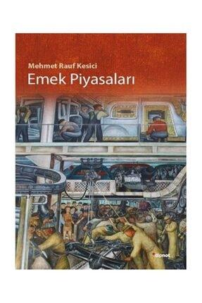 Dipnot Yayınları Emek Piyasaları - Mehmet Rauf Kesici