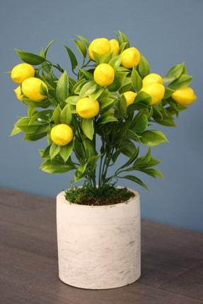Yapay Çiçek Deposu Beton Saksıda Mini Limon Ağacı 30 Cm