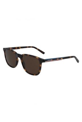 Lacoste Sunglasses Kadın Gözlük