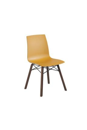 Papatya X-treme S Wox Iroko Plastik Sandalye Polikarbonat Gövde Mutfak Bahçe Cafe Otel Ofis Sandalyesi