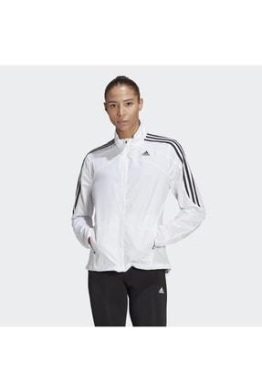 adidas Kadın Ceket Gk6061