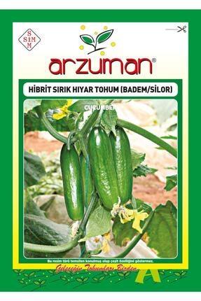 Arzuman Silor Badem F1 Sırık Hıyar Tohumu 10 Adet