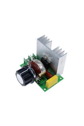 ZAUSS Ac Motor Hız Kontrol Devresi 4000w(4kw) Dimmer 220v Scr Regülatör