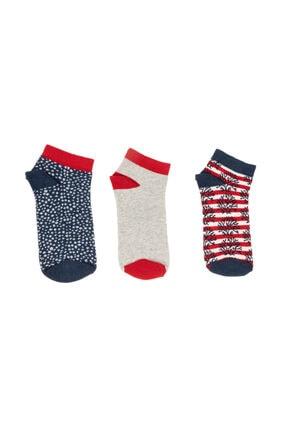 Madame Coco Jannie Kadın 3'lü Patik Çorap