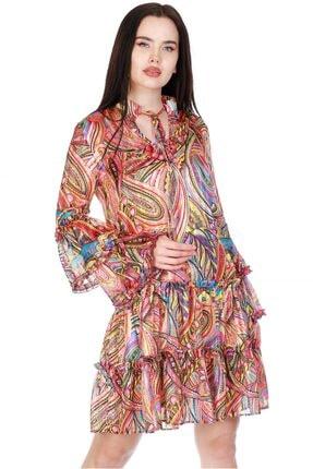 SERPİL Kadın Pembe Kolları Volanlı Desenli Elbise 20y0433015