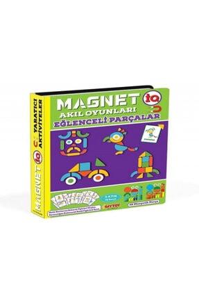 DIY Toys Manyetik Akıl Oyunları Eğlenceli Parçalar