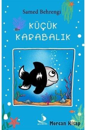 Destek Yayınları Küçük Karabalık