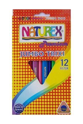 Naturex Premium Jumbo Trixi Kuru Boya 12 Renk