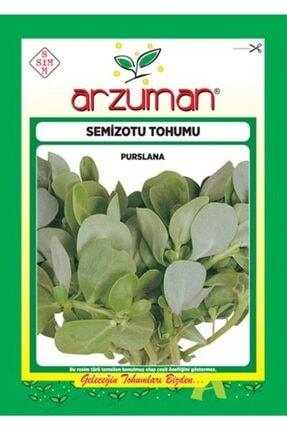Arzuman Tohum Arzuman Sebze Semiz Otu Tohumu 10 gr