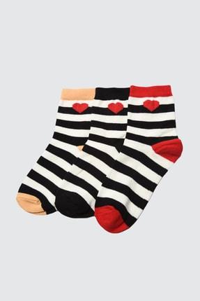 TRENDYOLMİLLA Siyah 3'lü Paket Nakışlı Örme Çorap TWOAW21CO0046