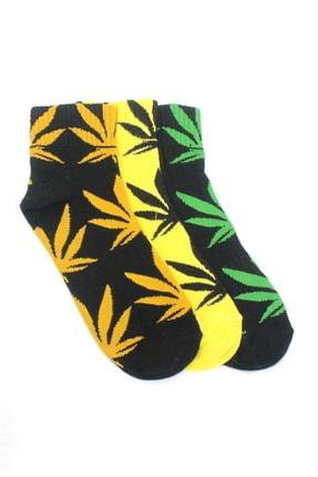 Hane14 Kadın Yaprak Desenli Pamuklu Kısa Neon Renkli 3'lü Paket Çorap