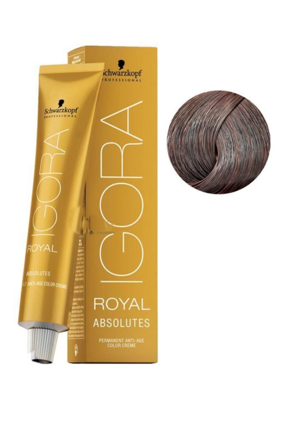 Igora Schwarzkopf Royal Absolutes 8.140 Küllü Kakao Saç Boyası 60 Ml 1