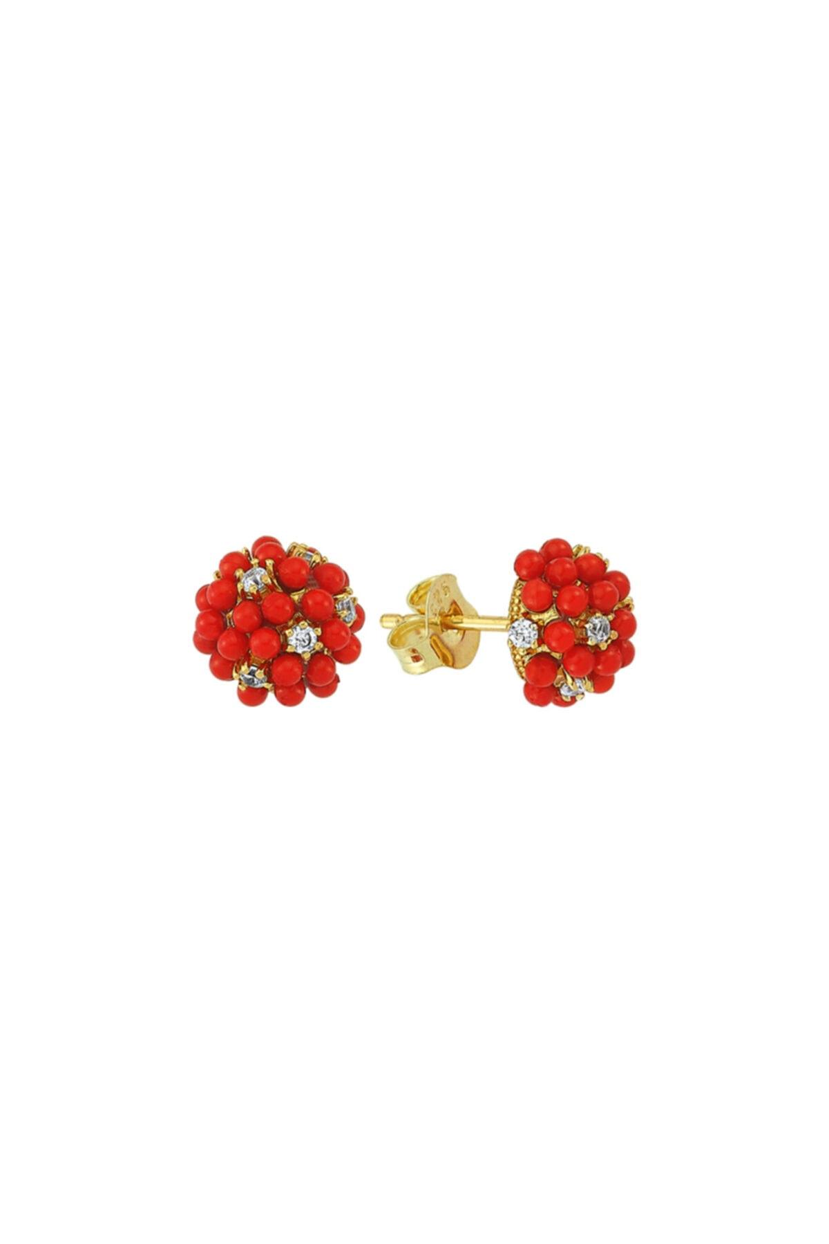Luzdemia Red Grape Earr. 925 1